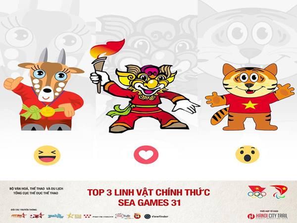 sea-games-31-to-chuc-o-dau-nhung-dieu-can-biet-ve-sea-games-31